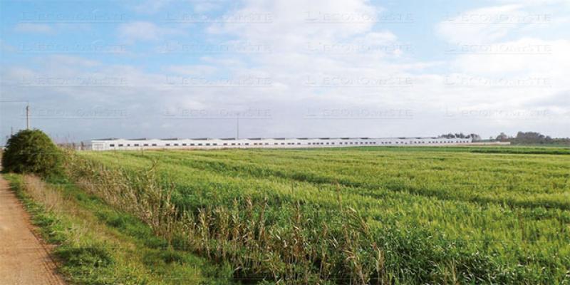 Nord: 4,4 milliards de DH pour le développement de la région