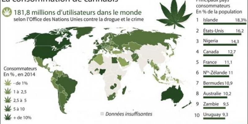 Drogues: Des marchés en pleine expansion