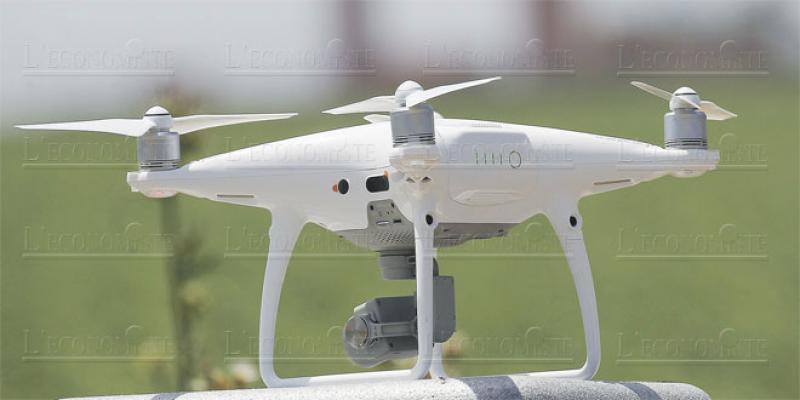 OCP: Des drones pour une agriculture raisonnée dans la région de Safi