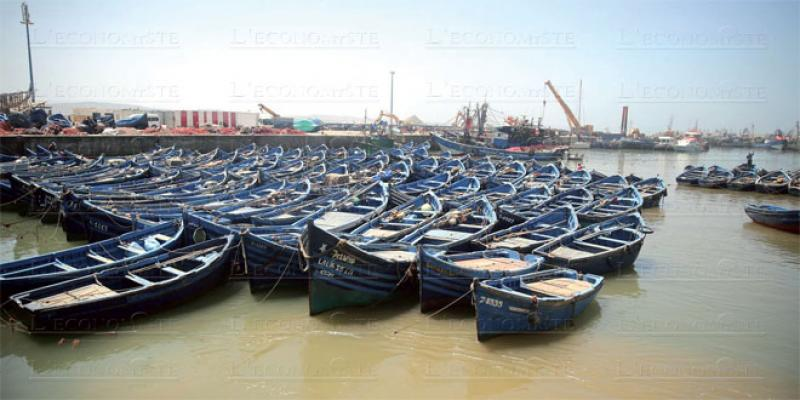 Economie bleue: Chami veut impliquer les régions