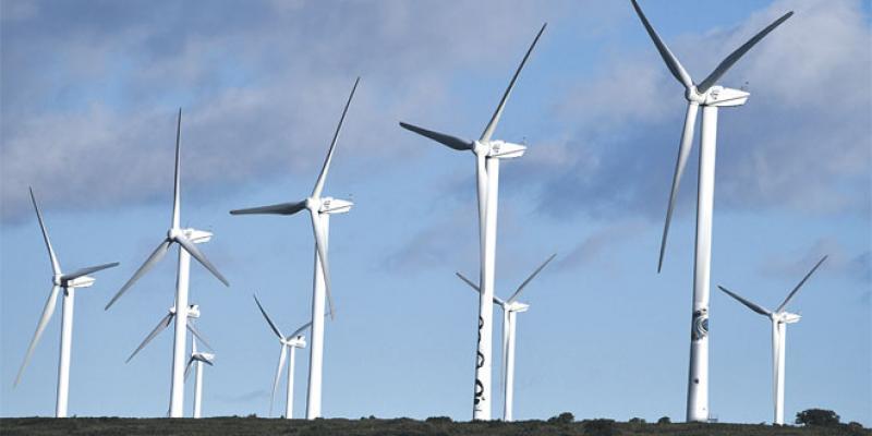 Gros appétit pour les énergies renouvelables