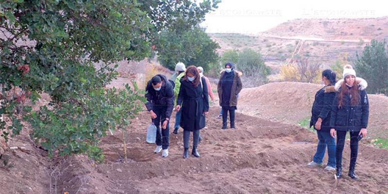 Environnement: La fondation Yves Rocher en route pour 42.000 arbres