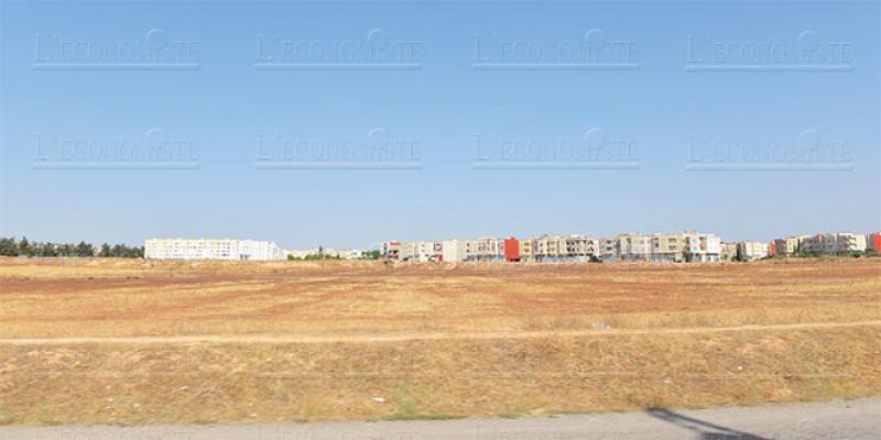 CRI Casa-Settat: Feuille de route pour le foncier industriel