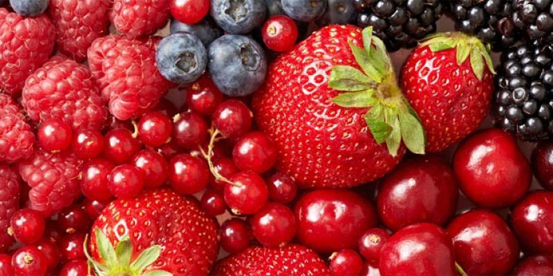Petits fruits rouges: L'imbattable moteur à l'export