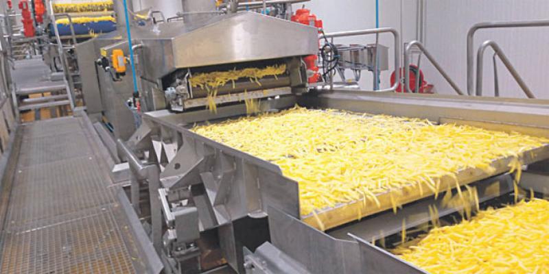 Fun Fries: Le 1er industriel transformateur de frites au Maroc!