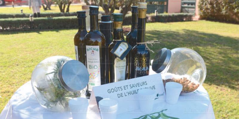 Huile d'olive: Fès-Meknès en course pour une notoriété internationale