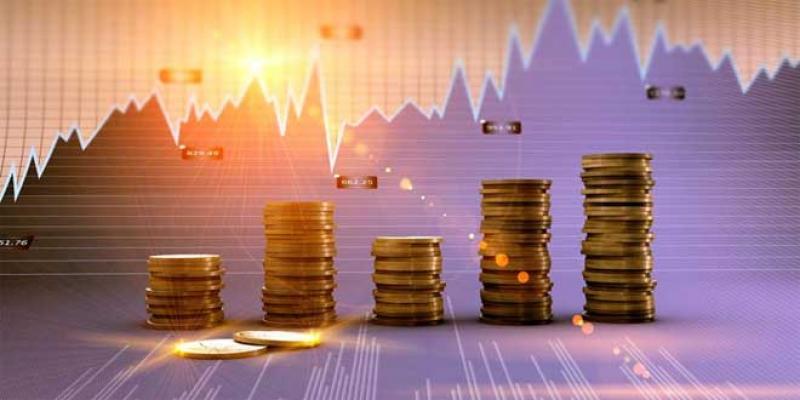 Investissement: Les entreprises publiques gardent le tempo