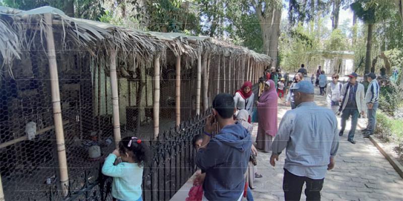 Fès/Tourisme: Jnane Sbil sur les traces du Jardin de Majorelle