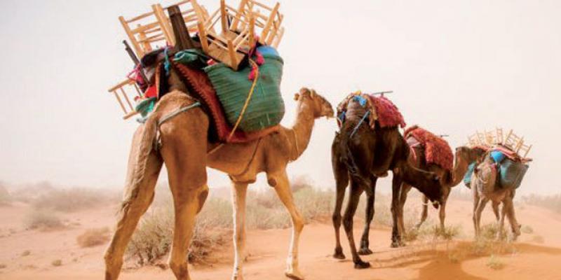 Art & Culture Week-End: Kafila, une caravane des arts et des savoirs