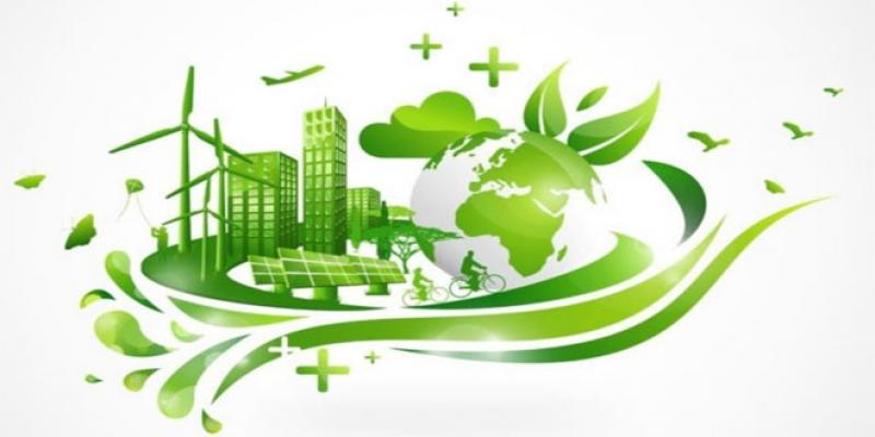 Politiques industrielles: Comment faire du Maroc une «usine verte»