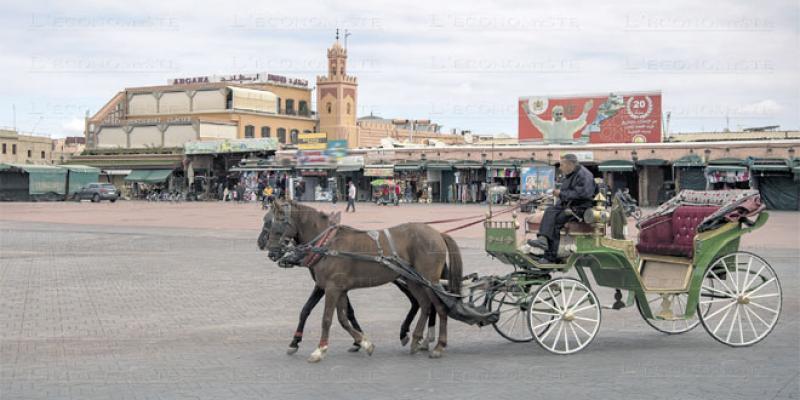Fêtes de fin d'année: Pluie d'annulations à Marrakech et Agadir