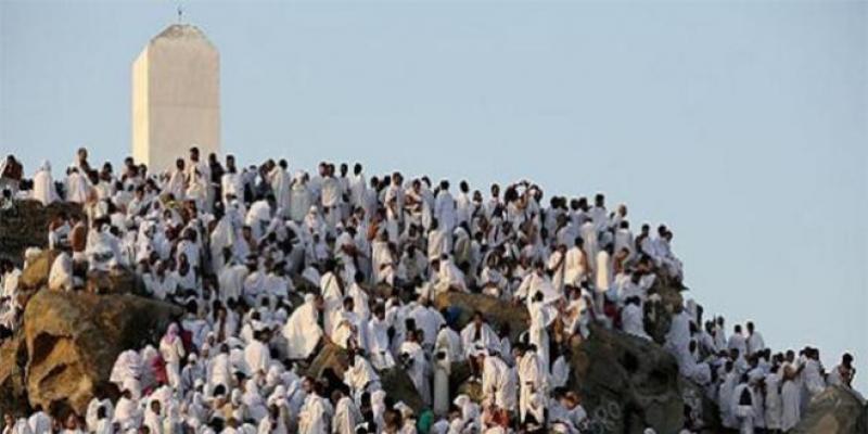 Hajj: l'ascension des marocains vers le Mont Arafat s'est bien déroulée