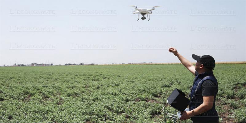 Smart agriculture: L'OCP s'allie au groupe InVivo