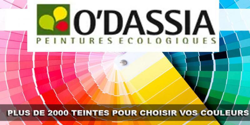 Peintures: O'Dassia compte tripler son chiffre d'affaires en 5 ans