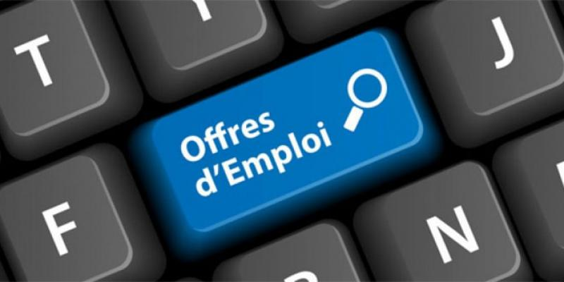 Recrutement: IT et Offshoring, champions en 2017