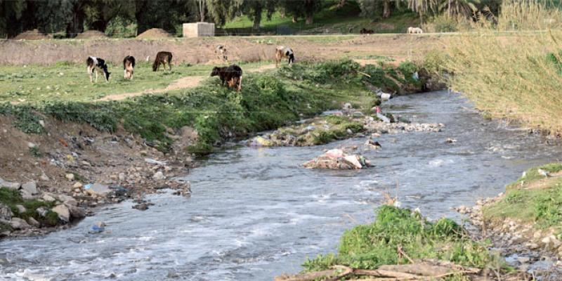 Fès-Sebou: L'agence du bassin trace ses priorités