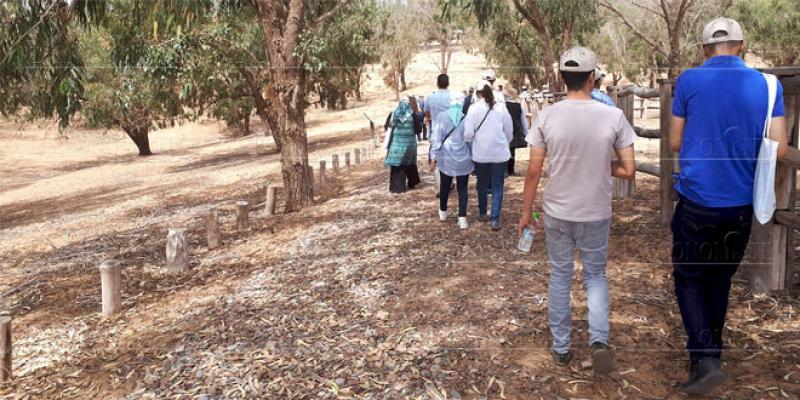Parc national Souss Massa: Un nouveau circuit pédestre voit le jour