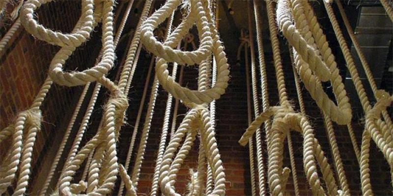Egypte: Les exécutions s'enchaînent