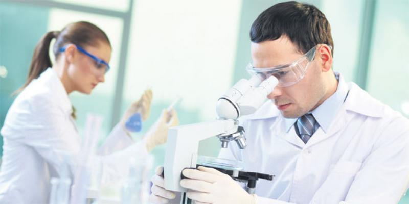PILAB: La science pour booster la productivité de vos troupes