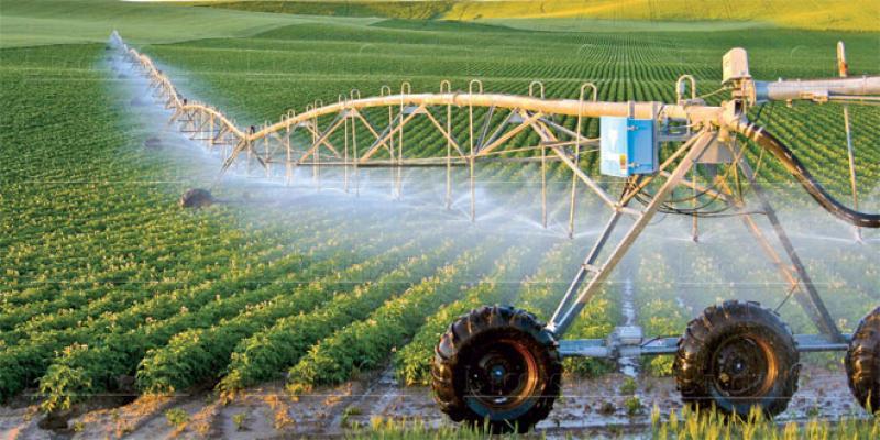Béni Mellal-Khénifra: Un plan agricole régional de 9,6 milliards de DH