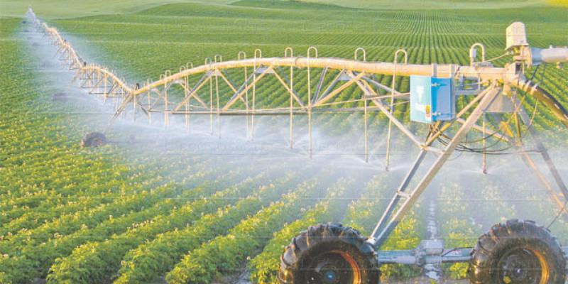 Agriculture: L'effet Plan Maroc Vert