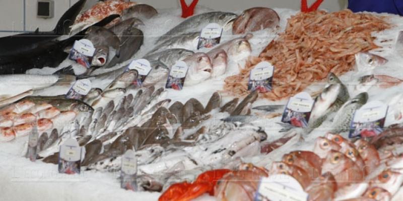 Des pistes pour rendre le poisson moins cher!