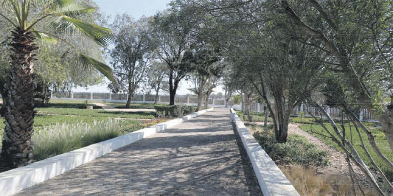 Pôle urbain de Mazagan: Comment concilier biodiversité et urbanisme?