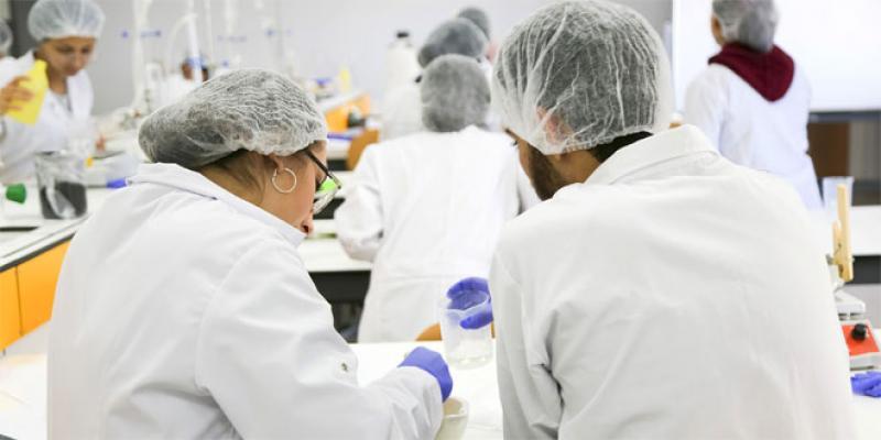 Produits de santé: Une première licence pro sur le marché