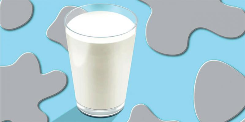 Produits laitiers: Faut-il s'inquiéter de la présence de toxines?