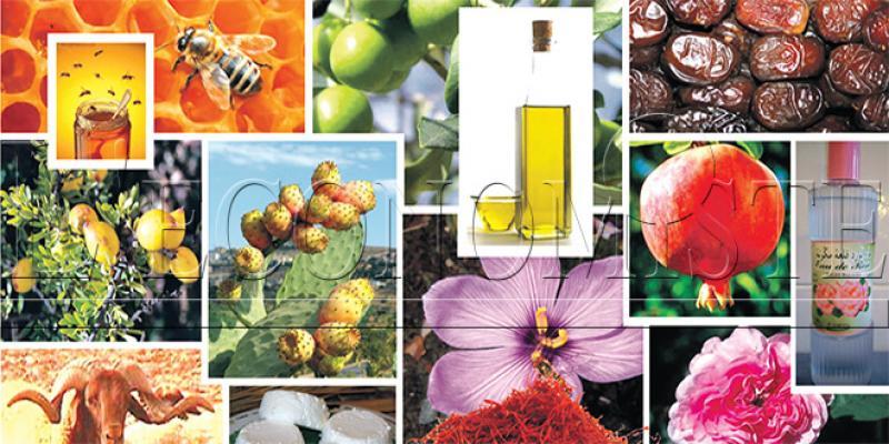 Mohammedia abrite la 3e Foire des produits du terroir