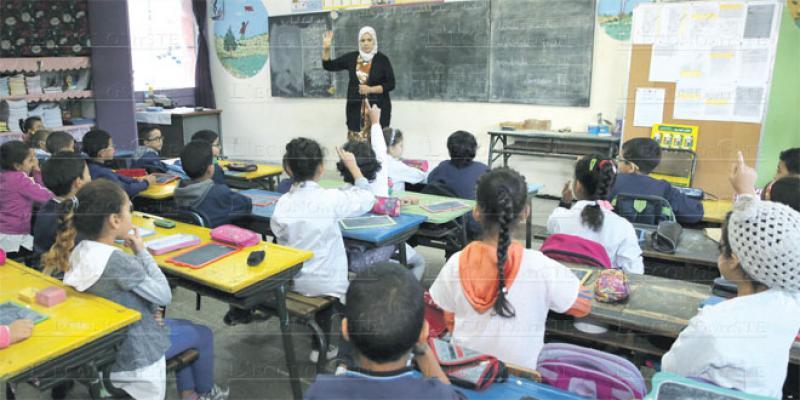 Formation des enseignants: Les licences en sciences de l'éducation n'attirent pas!