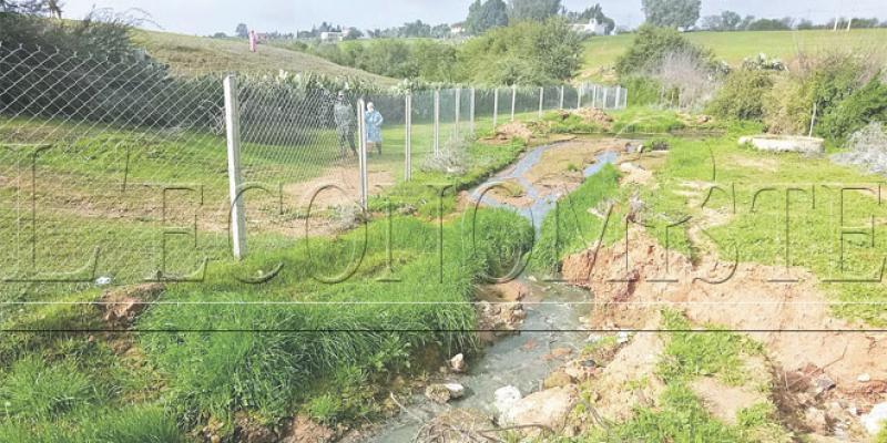 Rabat: Des mesures pour dépolluer le barrage Sidi Mohammed Ben Abdallah