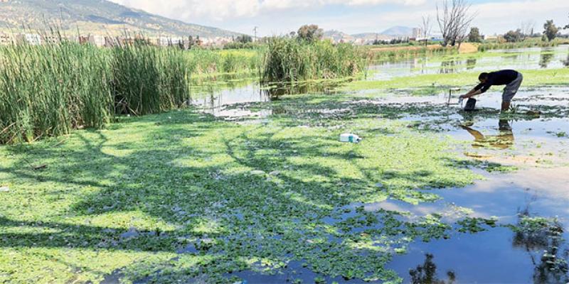 La rivière Oued Fès dans un état lamentable
