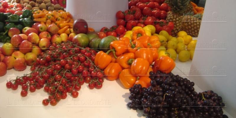 Salon Fruit Logistica: Le Maroc à la conquête du marché allemand