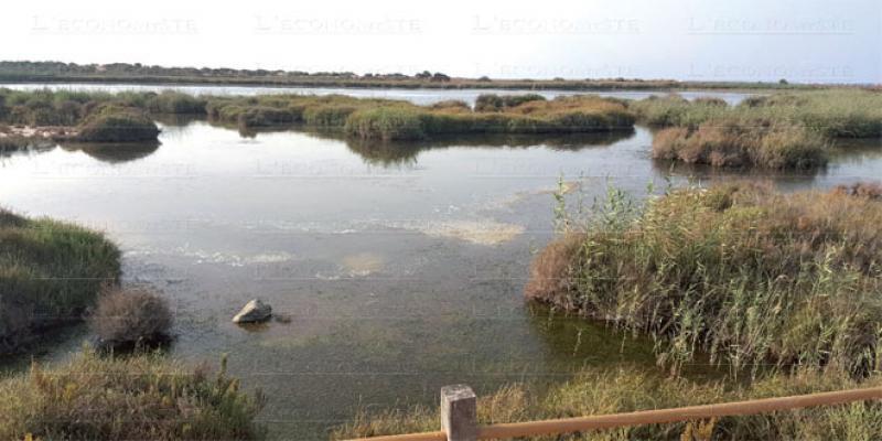Oriental: Tout un arsenal pour protéger le Sibe de la Moulouya