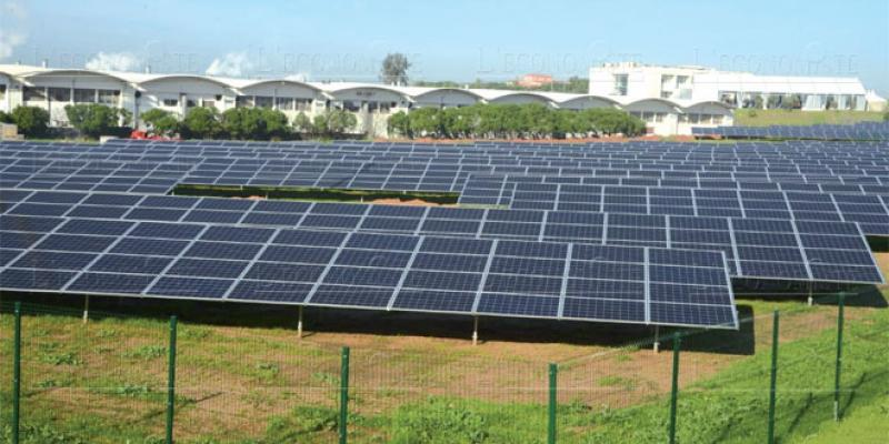 Solaire: Energy Vision accompagne Silver Food