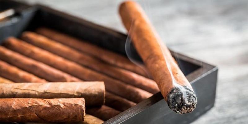 Les tabaculteurs se positionnent sur le cigare