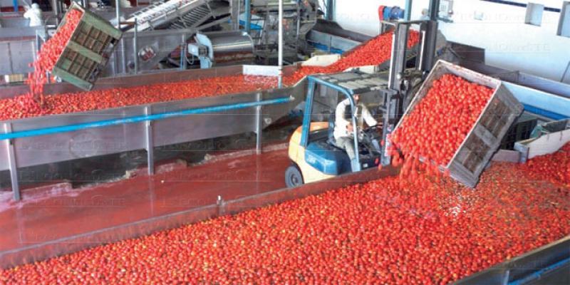 Concentré de tomate: Comment a-t-on lâché l'activité