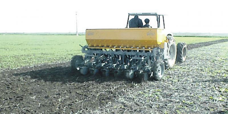 Agriculture durable/ OCP: Comment optimiser les récoltes malgré la faible pluviométrie