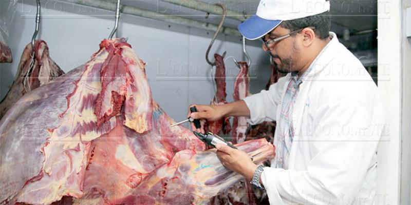 Viandes rouges: Les vétérinaires boycottent les abattoirs