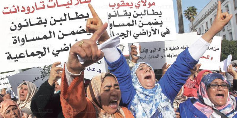 Violences contre les femmes: Les ONG démontent le dispositif de protection