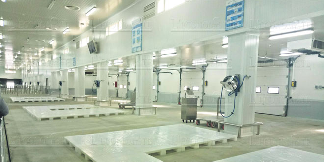 Tanger se dote d'un nouveau marché de gros au poisson