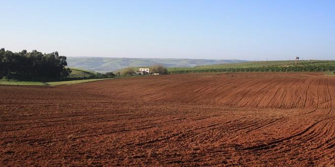Melkisation des terres collectives : La phase pilote démarre