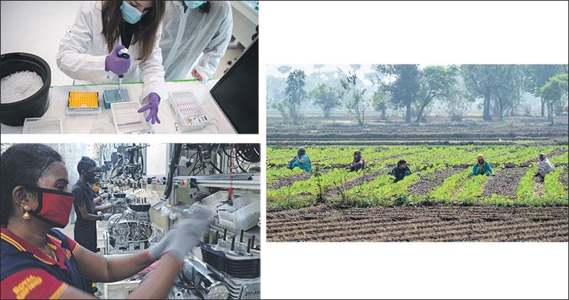 afrique-agriculture-035.jpg