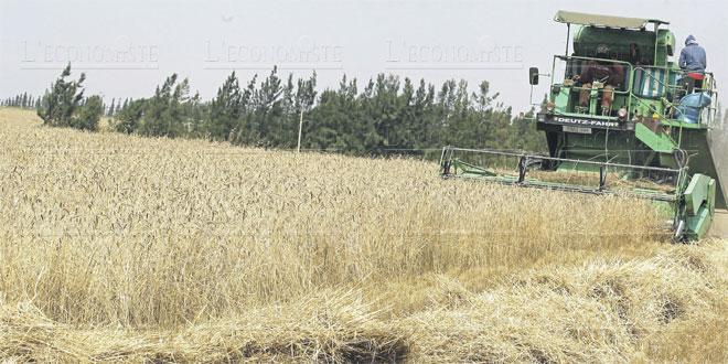 agriculture-072.jpg