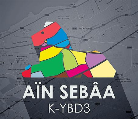 ain_sbaa_005.jpg