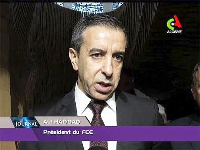 ali-haddad-075.jpg