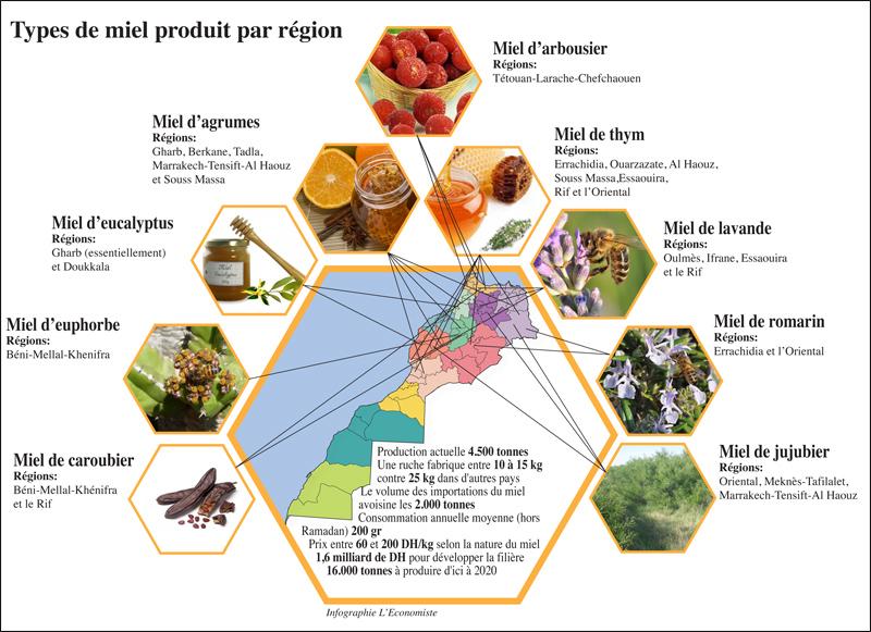 apiculture_095.jpg