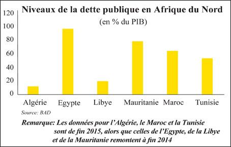 bad_afrique_du_nord_016.jpg