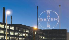 bayer_088.jpg